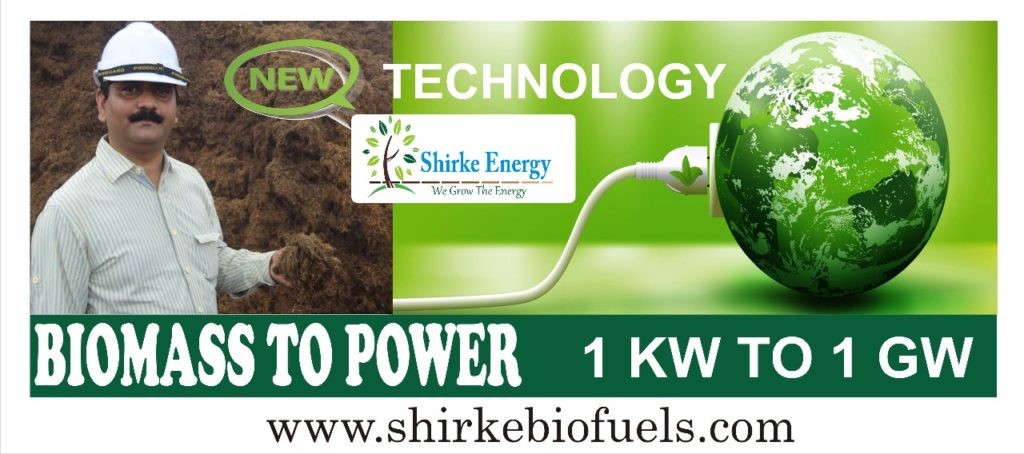 Waste to Power Generation India, Biomass to Electricity